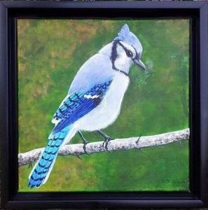 Bluejay - acrylics